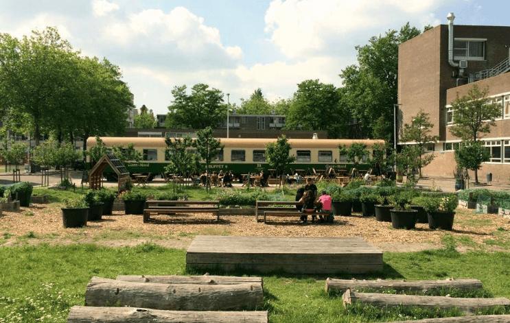 Groen Rotterdam Krant van de Aarde